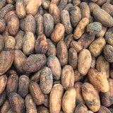 Cocoa Beans Whole (Raw & Organic) 200g